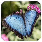 Rompecabezas Mariposas