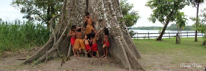 Tribu indígena en la Isla de los Micos en la Amazonía Colombiana.