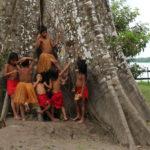 Top 10: Recomendaciones para viajar al amazonas