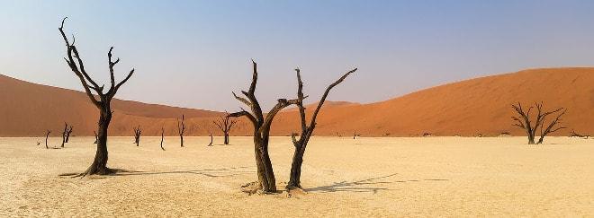 Desierto del Namib en Namibia, África.