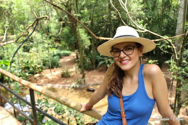 Parque das Aves en Foz do Iguaçu, Brasil.