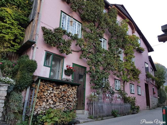 Casa con un árbol en la fachada.