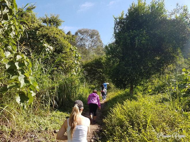 Caminata en la colina de Pan de Azúcar.