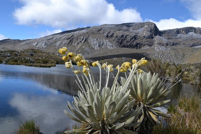 Parque Nacional El Cocuy.