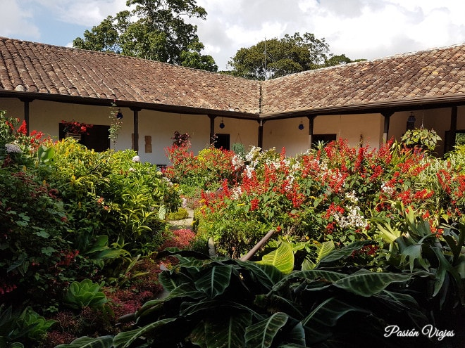 Jardín interior.
