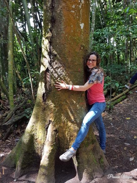 Abrazando un árbol para recibir todas sus energías positivas.