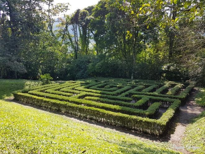 Laberinto en el Jardín Botánico del Quindío.