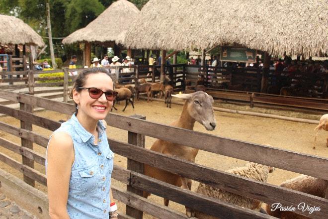 Con las cabras en Panaca.