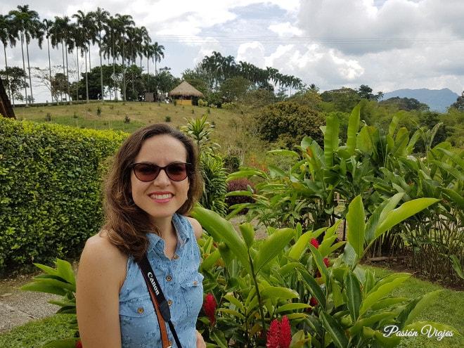 Vegetación y vistas en Panaca.