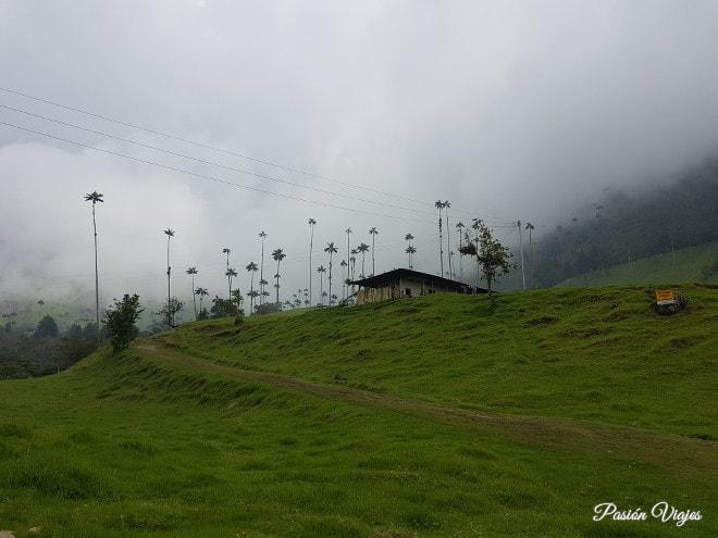 Paisaje con neblina en el Valle del Cocora.