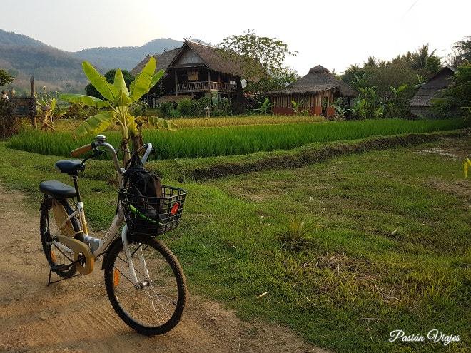 Paisajes a las afueras de Luang Prabang,