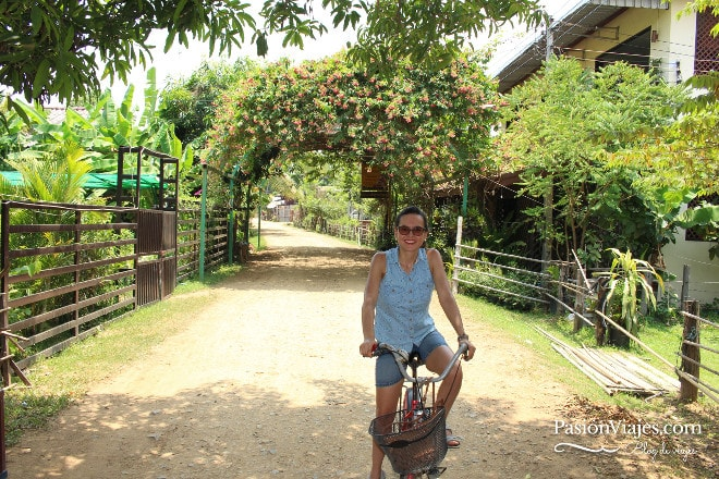 Paseo en bicicleta por la isla Don Khon.